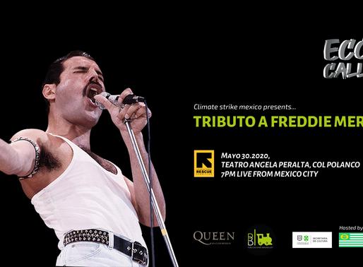 Anuncian tributo a Freddie Mercury para Mayo en la Ciudad de México