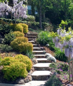 The Smith Guide to Landscape Maintenance in Claremont, CA