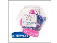 Big Brother sister2.jpeg