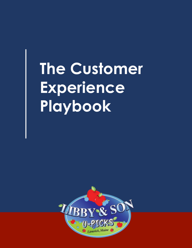 The Customer Experience Playbook