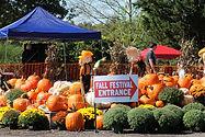 Fall-Festival-Reston-Farm-Market-VA-077.