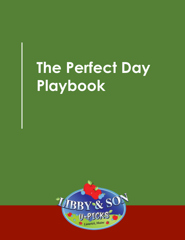 The Perfect Day Playbook