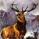 monarch_of_the_glen.jpg
