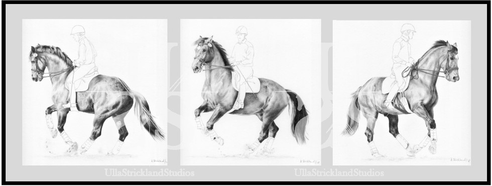 Triptych - Canter Pirouette II