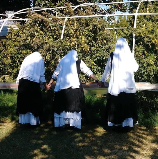 Sister Farm Merced 2018