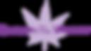 SOTV Logo.png
