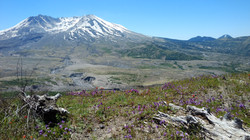 IMG_20170623_124050419.Mt.St.Helen