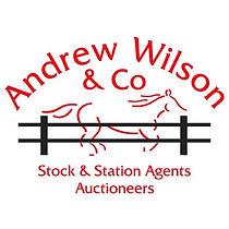 Andrew Wilson.jpg