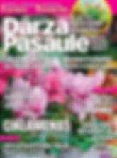 01_DS_2020-01.jpg