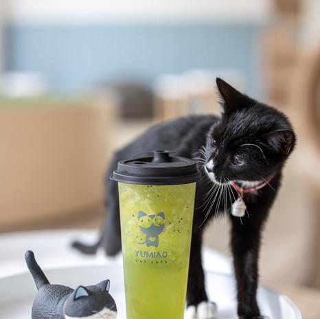 Pepper with Kiwi Spring Tea