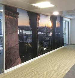 Wall Mural and Wallpaper