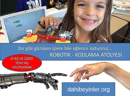 robotik-kodlama-stem-teknoloji-egitimleri-3-dahibeyinler.org.jpg