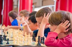 Dahi beyinler turnuva2