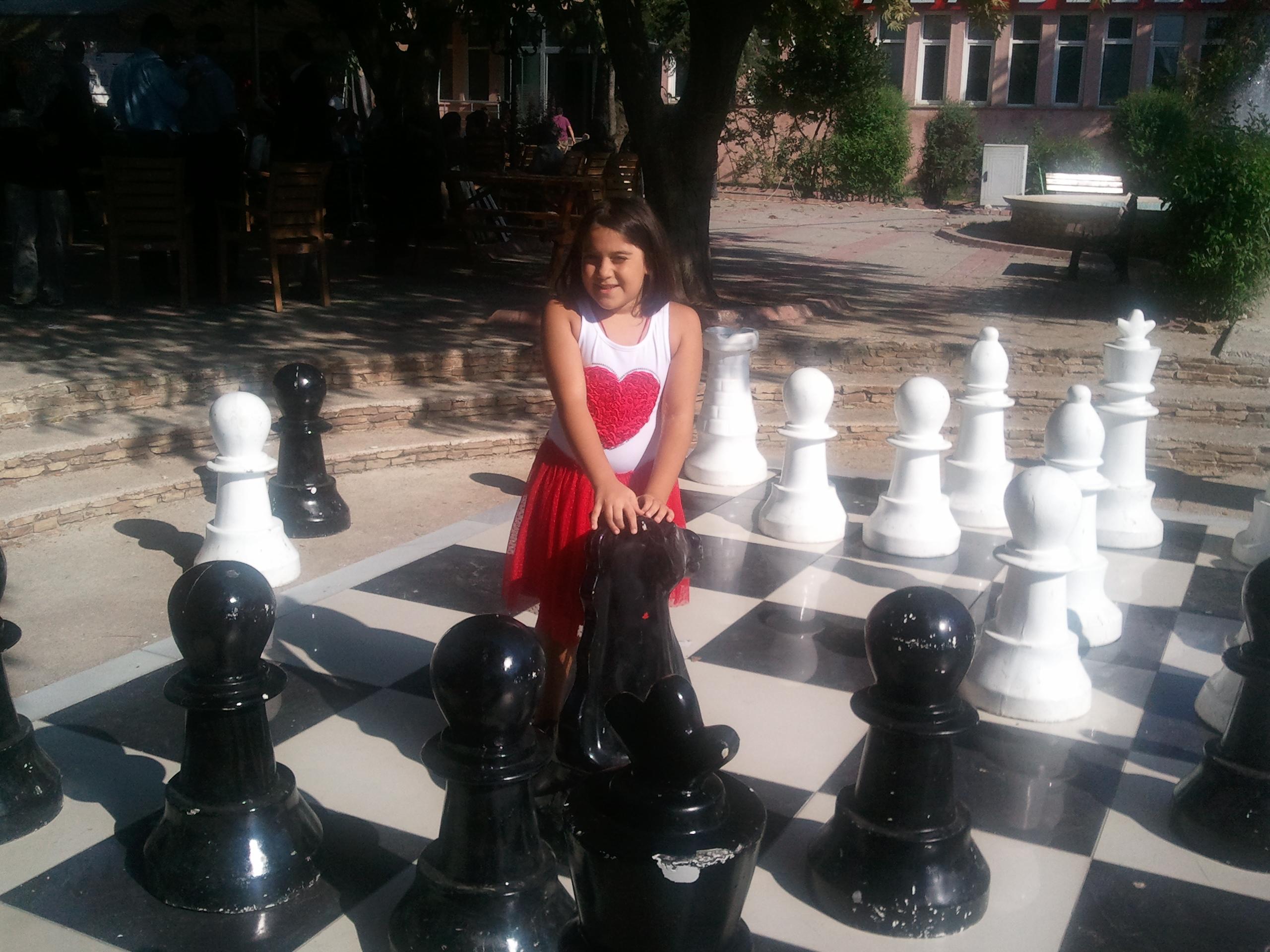 Dahi beyinler chesslover