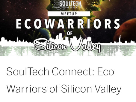 SoulTech Connect: Eco-Warriors of Silicon Valley