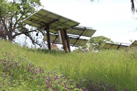 Solar Power at La Cienega