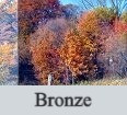 Bronze_edited.jpg