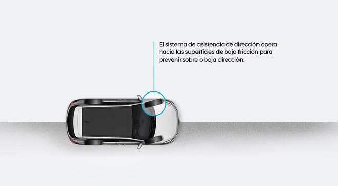 Gestión de la estabilidad del vehículo