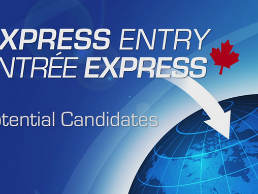You have these 4 skills? Apply for Express Entry! (Even without a Canadian job)