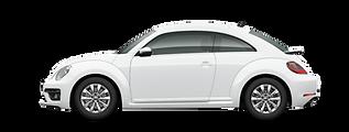 beetle-design.png