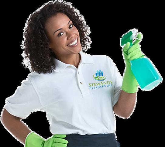 Stewandy Cleaners Inc.