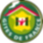 logo-gdf-200px-1373895415.jpg