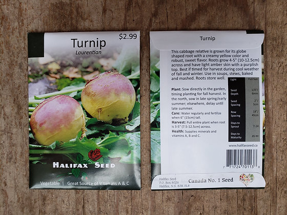 Turnip - Laurentian