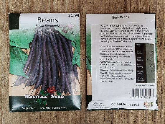 Beans - Royal Burgundy
