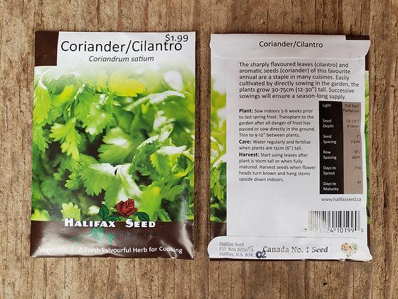 Coriander/Cilantro - Coriandrum satium