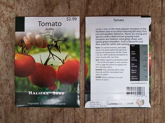 Tomato - Scotia