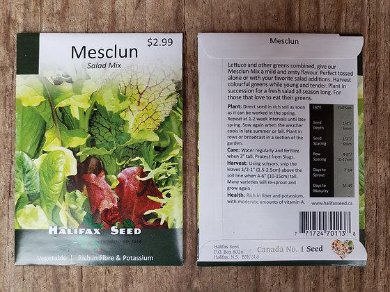 Mesclun - Salad Mix