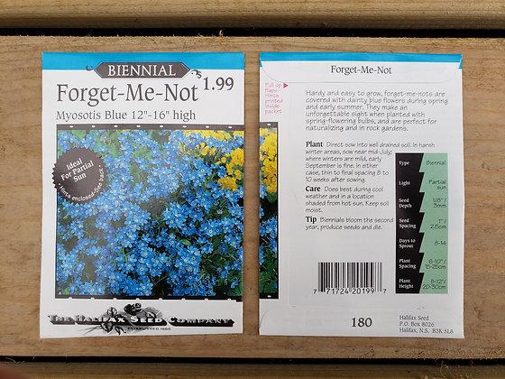 """Forget-Me-Not - Myosotis Blue 12-16"""" high"""