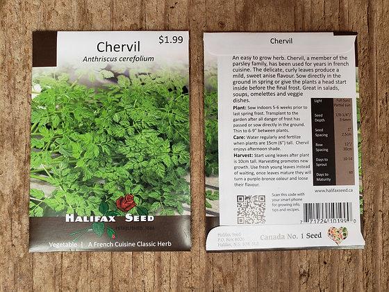 Chervil - Anthriscus cerefolium