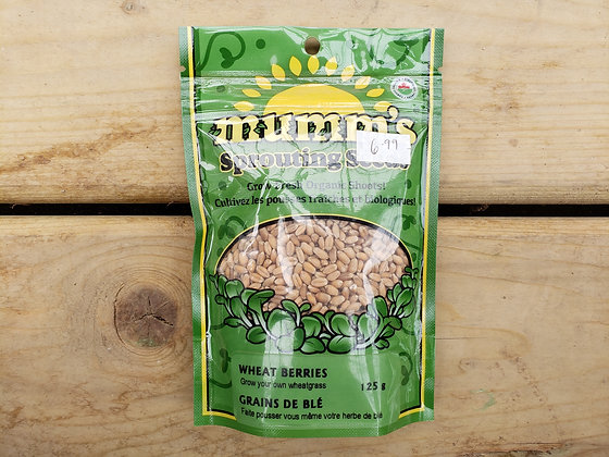 Mumm's Sprouting Seeds - Wheat Berries