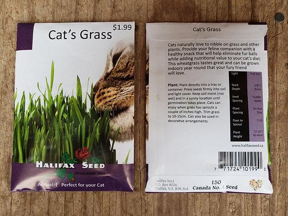 Cat's Grass