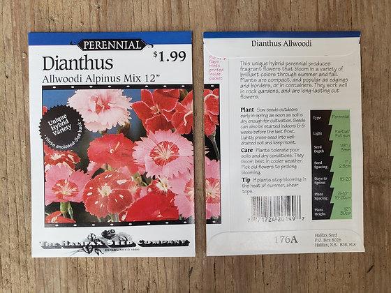 """Dianthus - Allwoodi Alpinus Mix 12"""""""