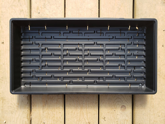 Seeding tray - with drainage
