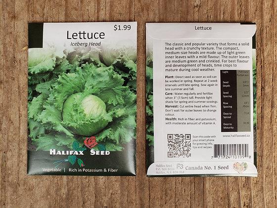 Lettuce - Iceberg Herb