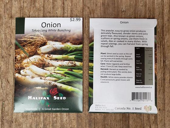 Onion - Tokyo Long White Bunching