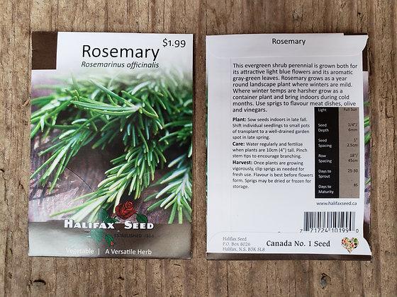 Rosemary - Rosemarinus officinalis
