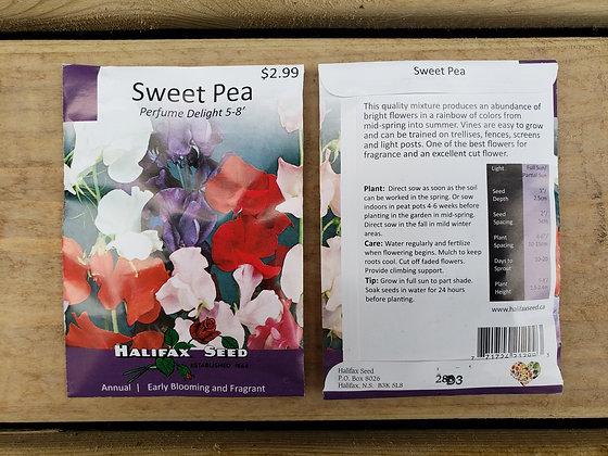 Sweet Pea - Perfume Delight 5-8'