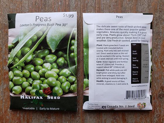 """Peas - Laxton's Progress Bush Pea 30"""""""