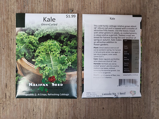 Kale - Green Curled