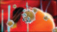 lipofirm-plus-figure-1.jpg