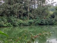 aroma xicotepec cabanas y camping