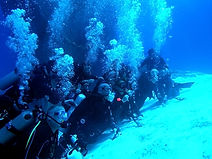 aquasafari diving shop cozumel