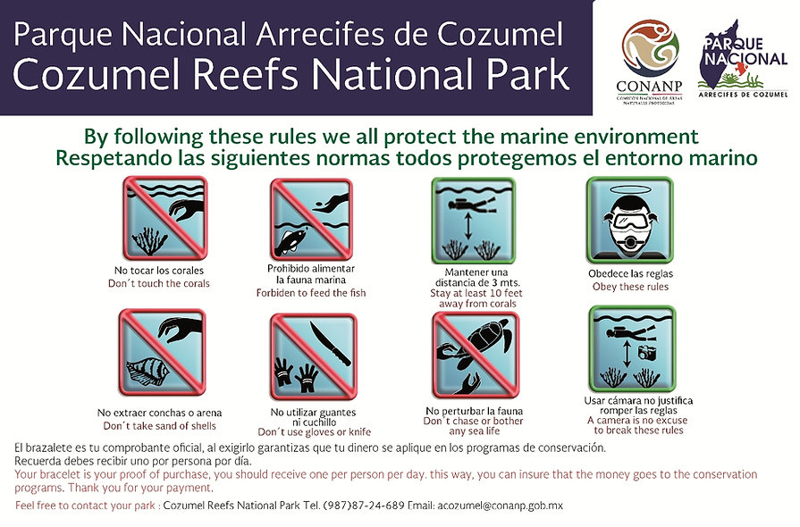 aquasafari cozumel reef rules