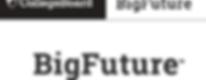 BIG FUTURE.png