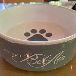 ceramic doggie bowls