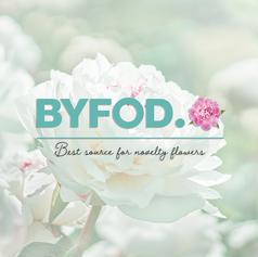 BYFOD